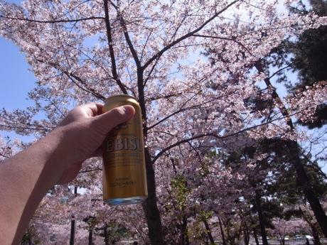 石屋川公園でお花見